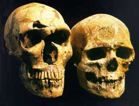 Neanderthal and Cro-Magnon